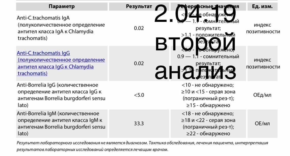 A85C5EAA-A607-4D38-8473-1188022C6DC3.jpeg