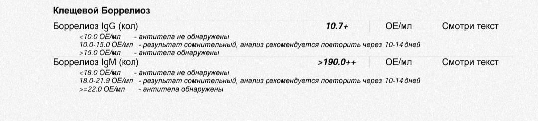 IMG_20200929_044908.jpg