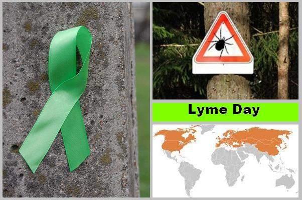 Lyme day 2.JPG