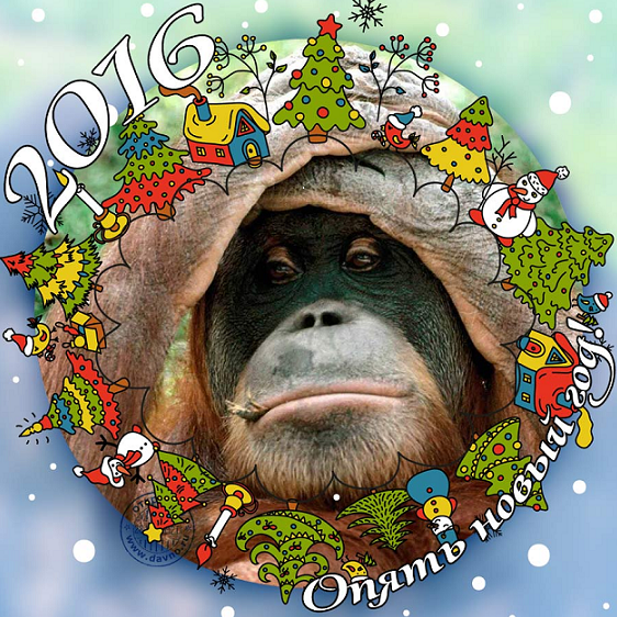 upload_2015-12-31_11-0-12.png