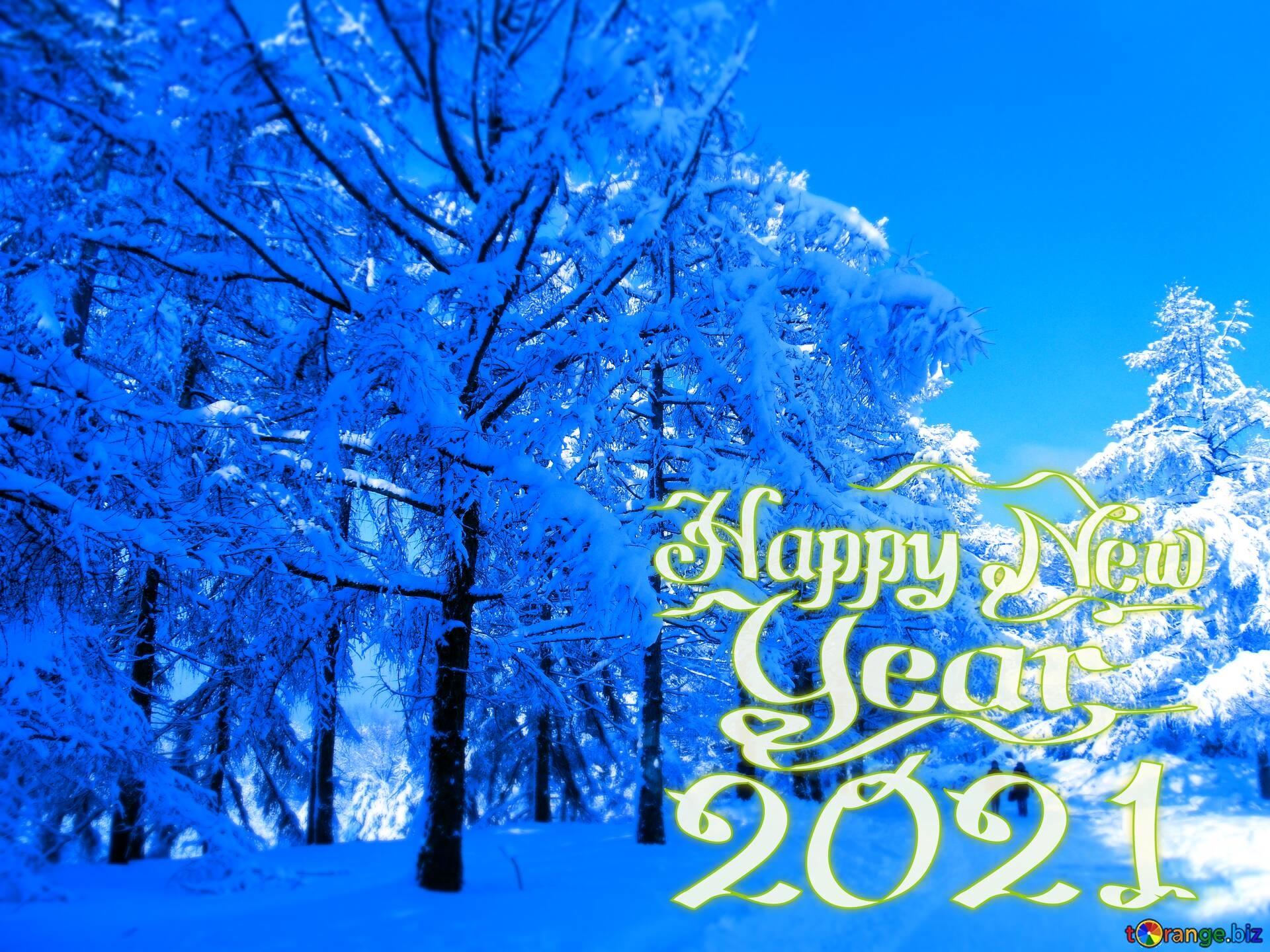 winter-snow-effect-mirror-macro-141797.jpg