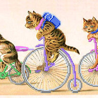 bikelife