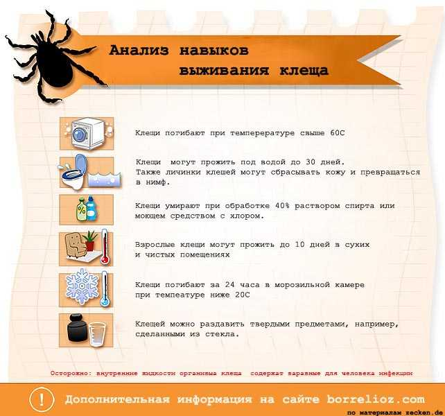 препараты убивающие паразитов в организме