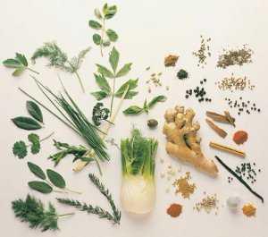 medicinal_herbs